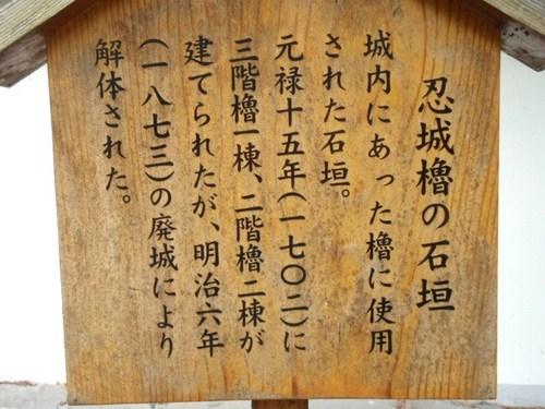 かねつき堂 ハス 忍城 041.JPG