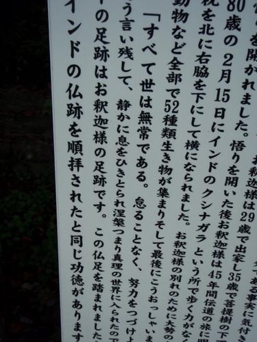 唐沢山城 さる 084.JPG
