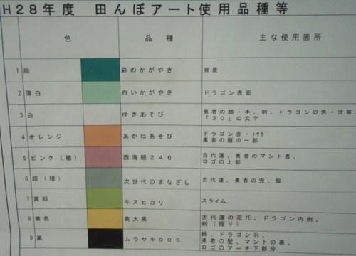 たんぼアート 010.JPG