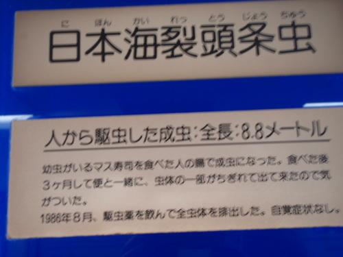 とろけ・目黒・寄生虫・目青・蔦 026.JPG