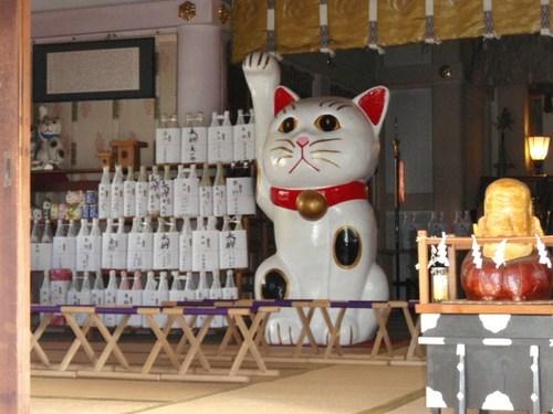 今戸神社 メロンパン 106.JPG