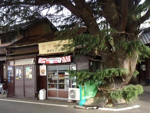 小山酒造 根津神社 大塚 006.JPG