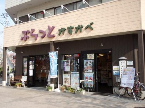 春日部 徘徊 004.JPG