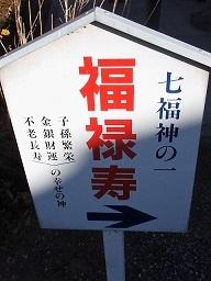 P1224233 - コピー.JPG