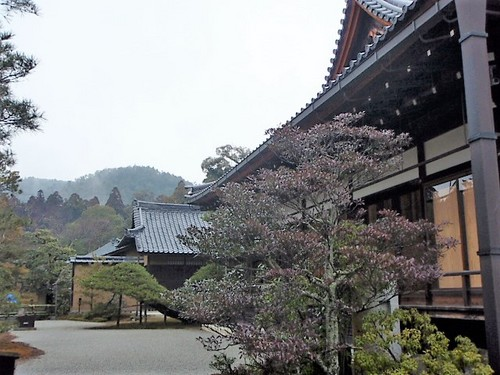 P2011713.JPG