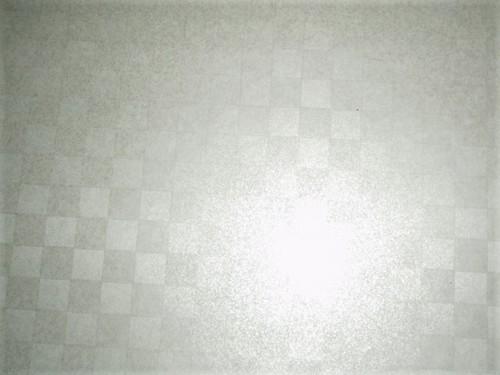 P2144293.JPG